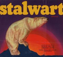 stalwart.campos0333.down