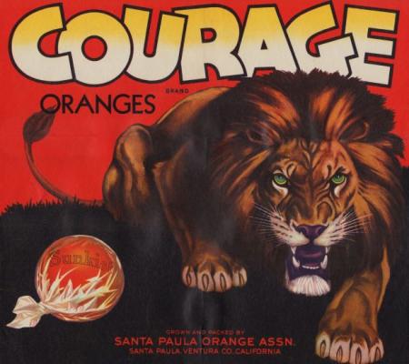 courage.campos.main